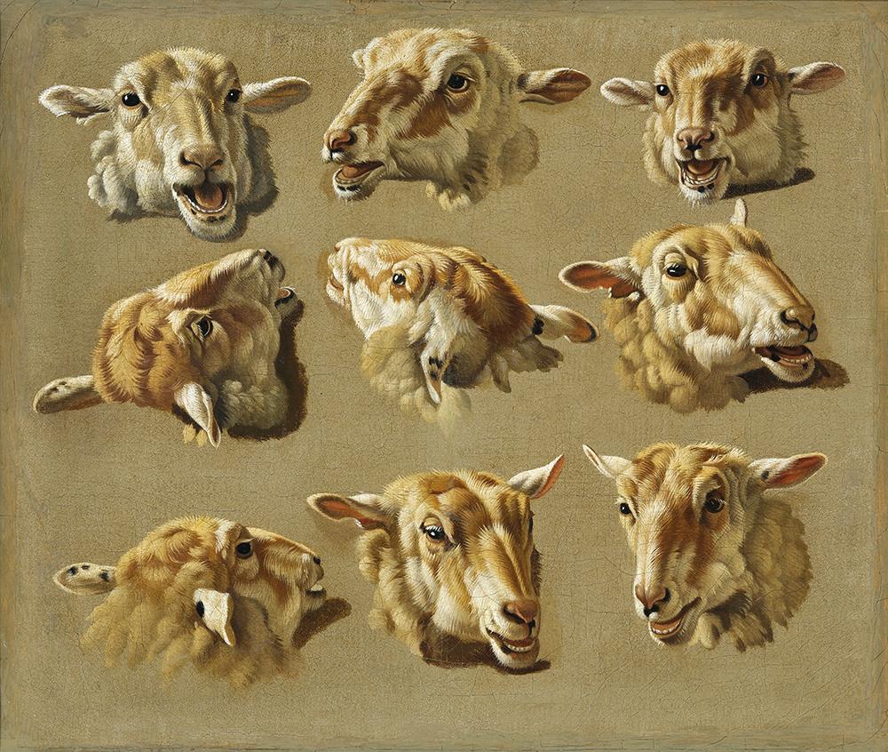 Jacques Raymond Brascassat sheep heads sheep head – James Bauerle – Danish fine art